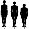 14 классификации мужчины