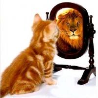 Самооценка: завышенная или заниженная?