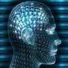 69 простых советов для улучшения работы мозга